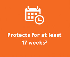 17 Weeks Protection
